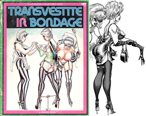 Transvestite slave cartoons what necessary